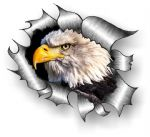 Ripped Torn Metal Design With American Bald Eagle Motif External Vinyl Car Sticker 105x130mm